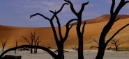 Namibia Highlights, 14 Days Safari, Accommodated