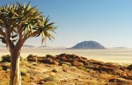 Cape Town - Victoria Falls, 20 Day overland camping tour