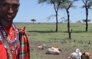 EaEast African Adventure, North, 21 Day Overland Tour, Accommodated