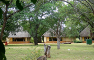 Satara's chalets are built under huge indigenous trees.