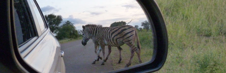Botswana Self-Drive tours